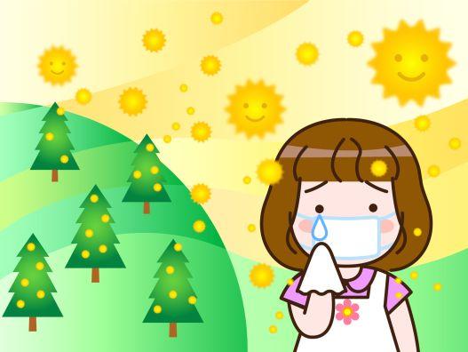 スギ花粉2017飛散情報が悲惨なことに?特に西日本ではすごく多くて最悪の状況かも